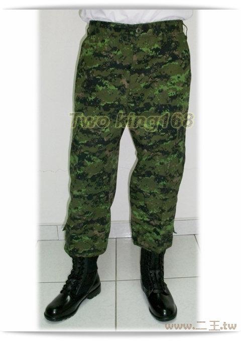 ★☆加拿大數位迷彩褲(特戰版)★★☆迷彩褲★☆生存遊戲★野戰褲