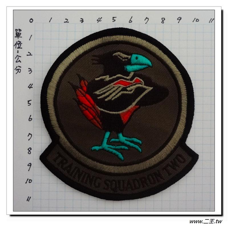 ★美國臂章☆美國海軍飛機訓練中隊VT-2/初級和中級訓練-美國海軍飛行員訓練中隊100元-國外513