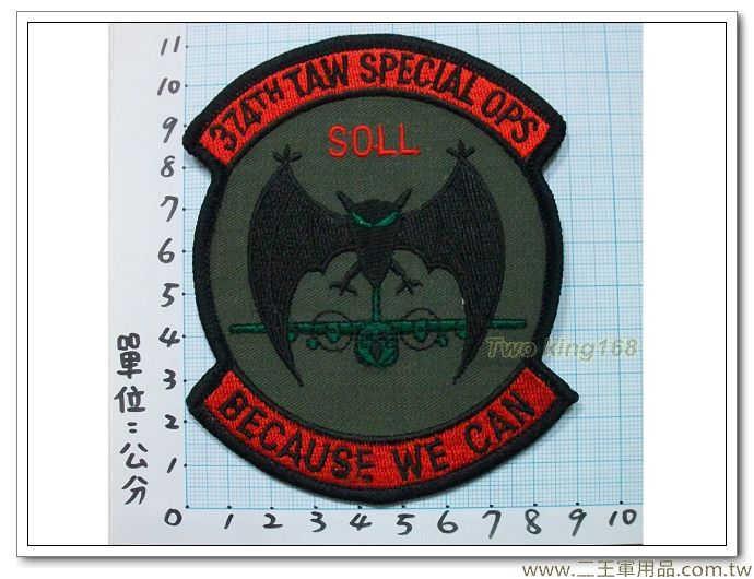 美國空軍第374戰術空運聯隊(黑蝙蝠)-國外434-100元