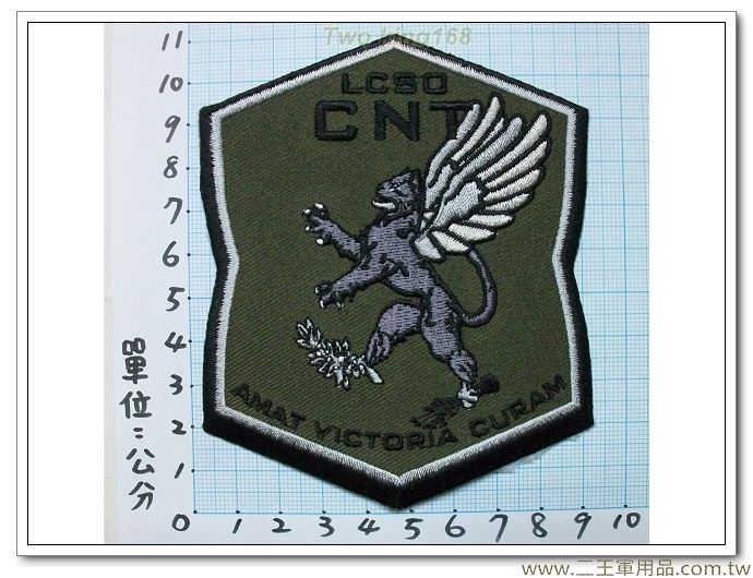 ★極限秒殺 臂章-國外433