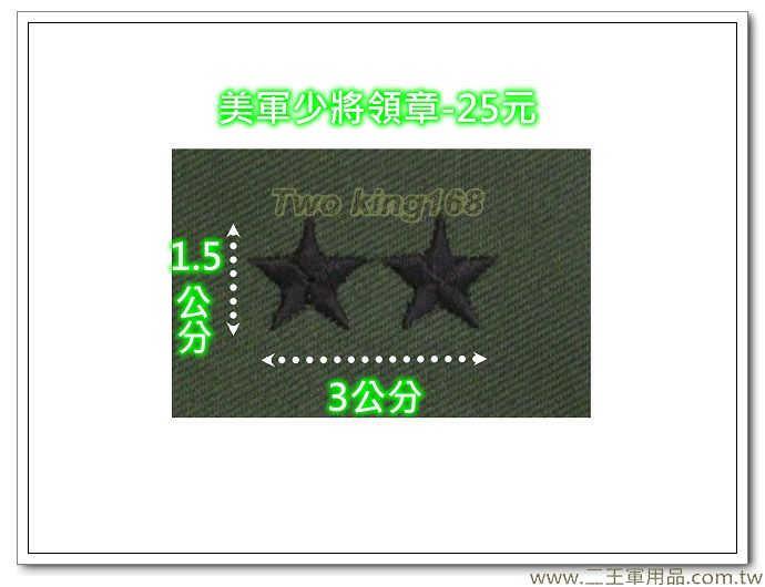 ☆美軍少將領章 美國 陸軍 叢林迷彩 迷彩服 早期 低視度 野戰服