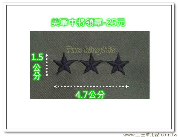 台灣軍用品☆美軍中將領章(LtGen) 美國 陸軍 叢林迷彩 迷彩服 早期 低視度