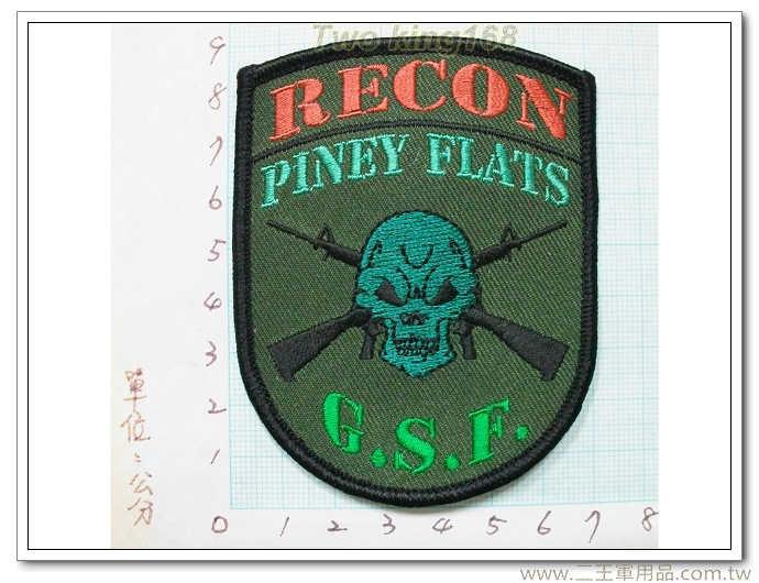 針葉林-偵察部隊-美軍偵察部隊臂章-國外353