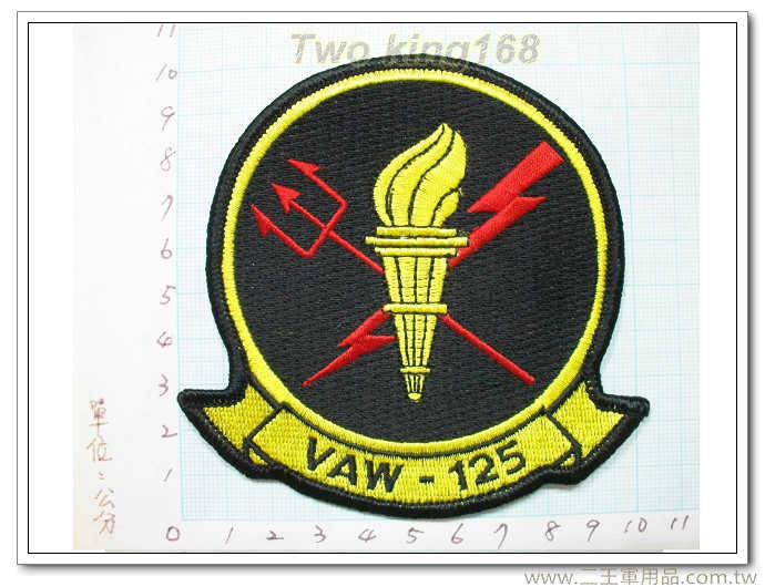 飛行領隊-國外193-1 臂章