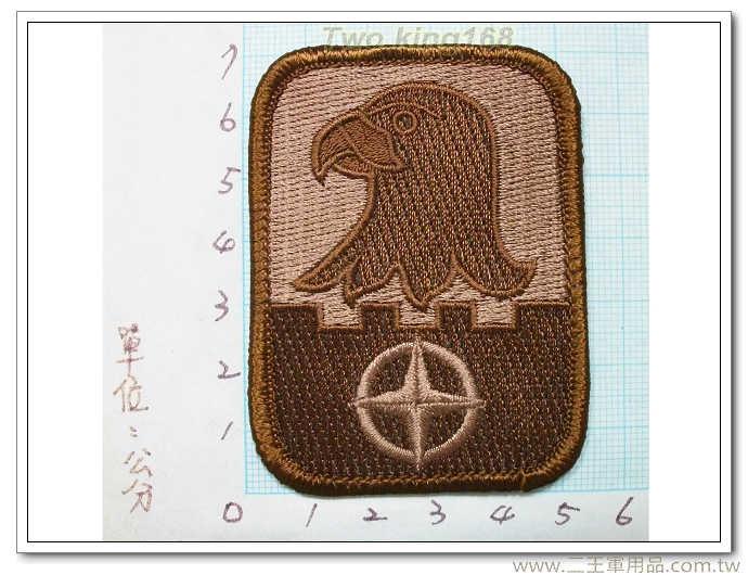 美國陸軍第224航空旅-國外335 美軍 臂章