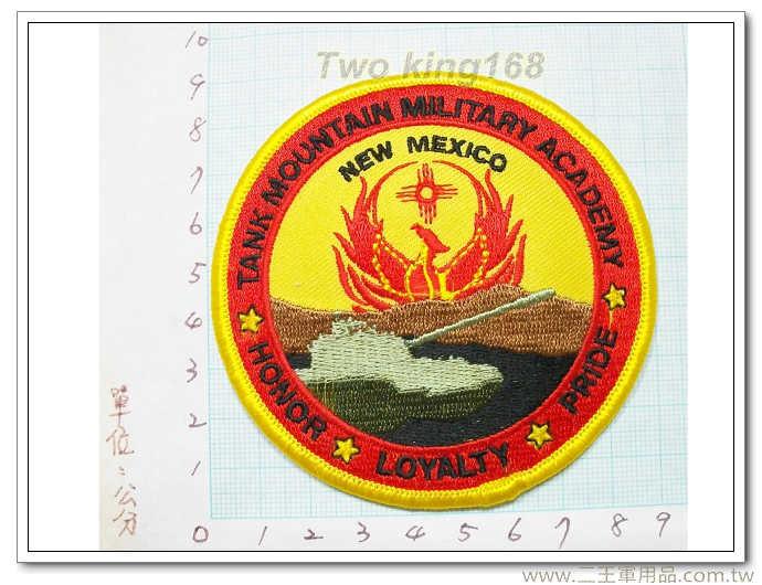 美軍坦克山軍事學院-國外288