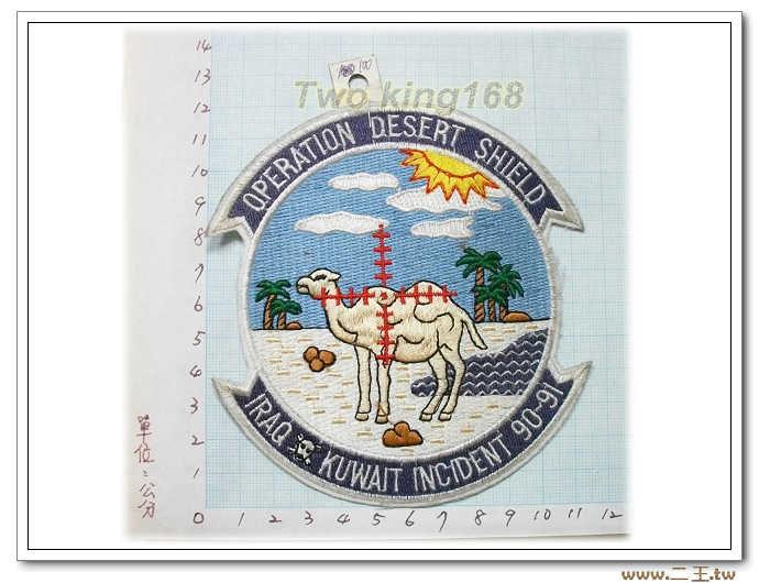 5-28美軍沙漠風暴紀念章