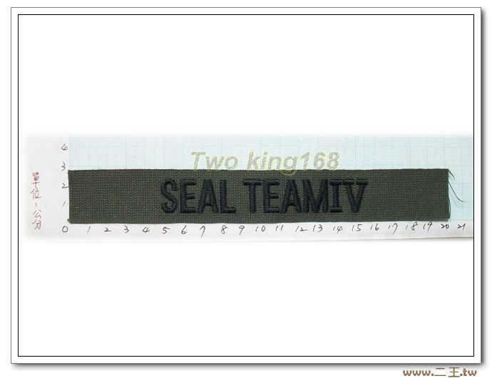 11-20-1美國海軍特種部隊海豹6隊名條 O.D版包邊版-美軍名條