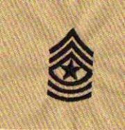 ★二王軍警用品☆美軍上級士官長(沙漠)領章★ 美國 陸軍 沙漠迷彩 迷彩服 早期 低視度