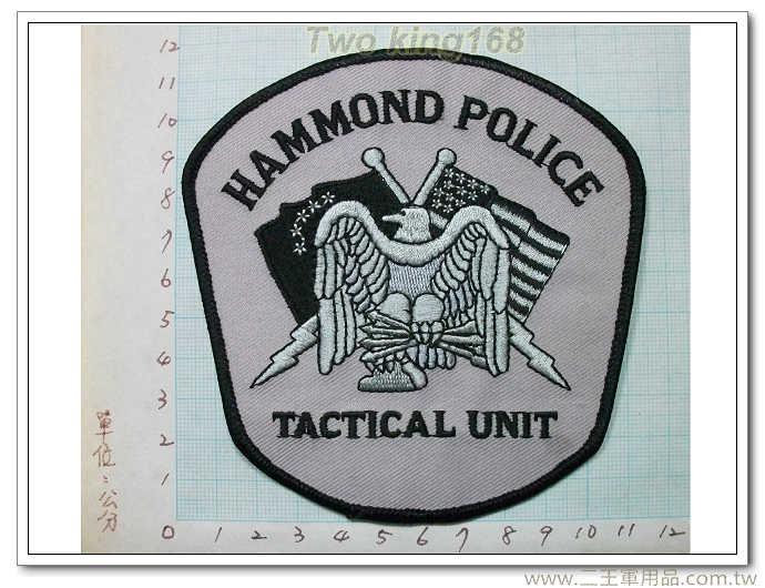哈蒙德警察部門霹靂小組-國外130-35