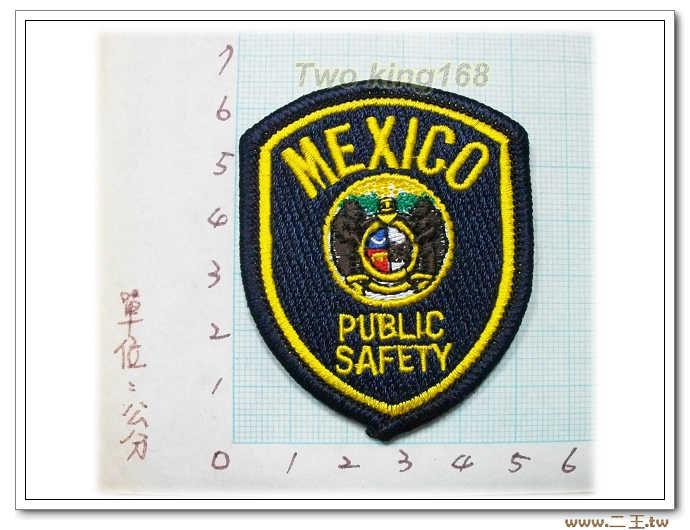 墨西哥安全部門國外133