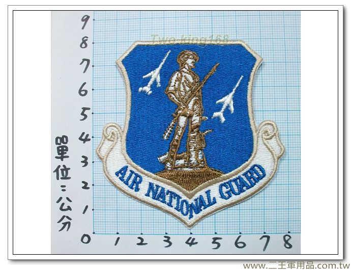 美國空軍國民警衛隊(彩色版)國外-135-2-80元
