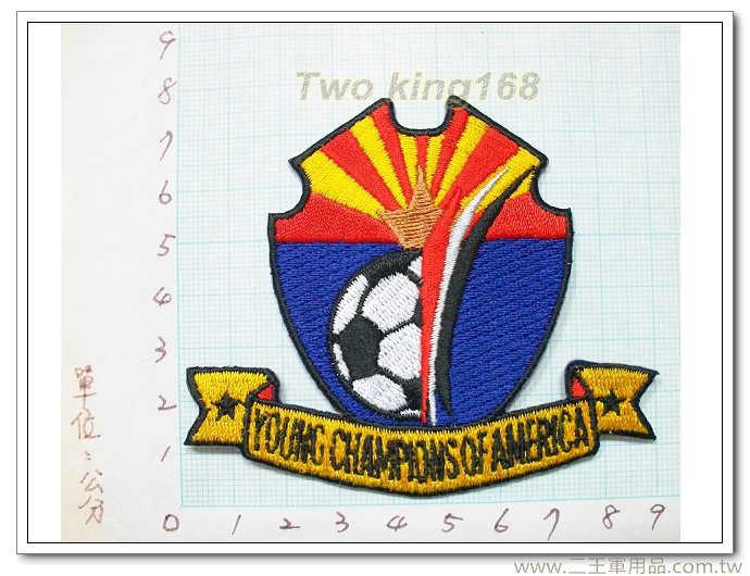 美國青少足球冠軍盃-國外213