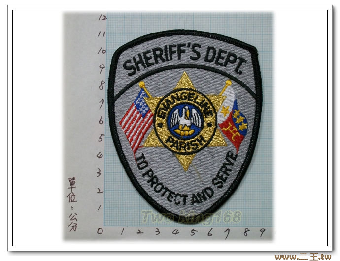 謝里夫保護和服務事業部臂章9-47