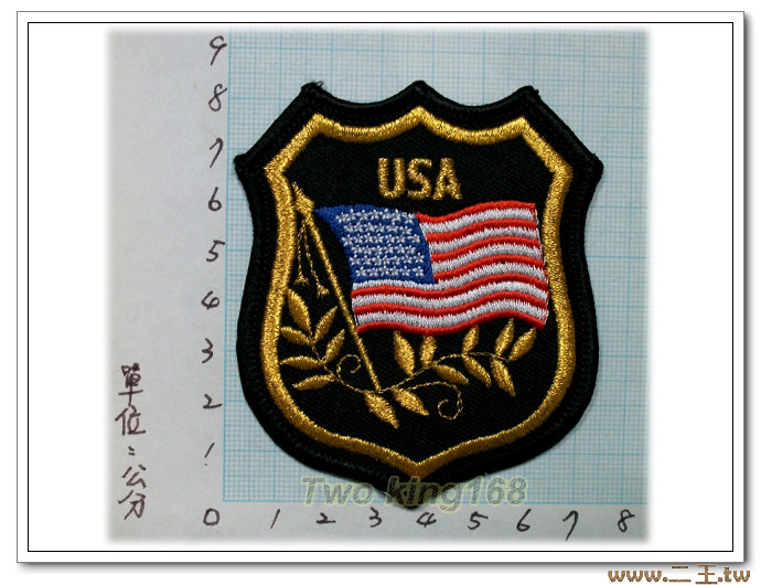 美國榮譽徽章 臂章-2-56☆★電繡臂章☆★刺繡臂章☆★識別章☆★軍用品