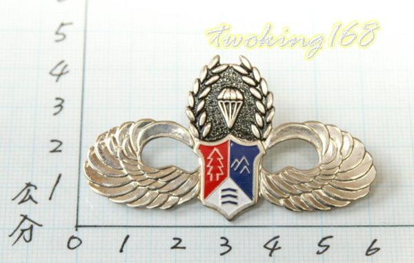 ★☆空特鐵漢傘胸章(銅質)ba10-1★軍裝☆陸軍★軍便服 軍常服 空降特戰