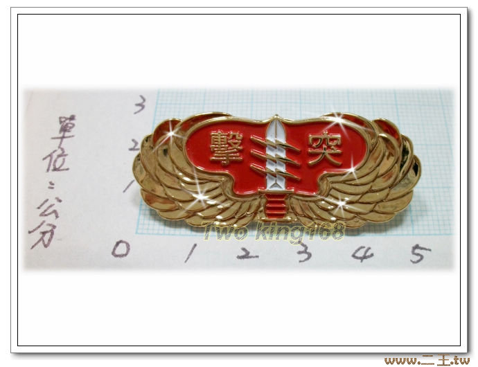 ★☆陸軍突擊兵資格章(高級)ba11-1★國軍 軍裝☆陸軍★軍便服 軍常服