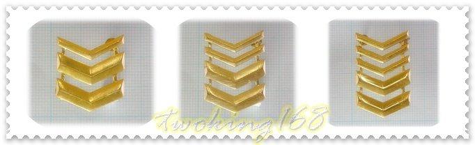 ★☆陸軍-海陸-士官長金屬帽階★國軍 軍裝☆陸軍★軍服 軍常服 海軍陸戰隊