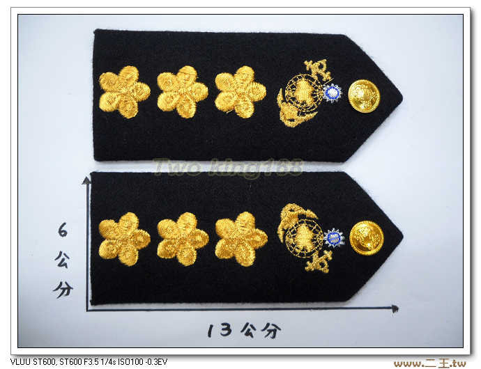 海軍陸戰隊上校白甲服肩章-白軍禮服肩章