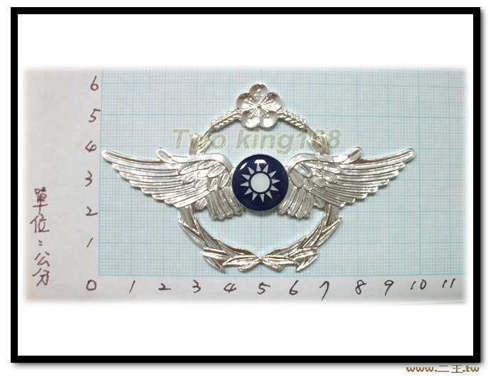★☆特大版空軍徽章-鋁質-bg1-4 ★☆空軍★配件★