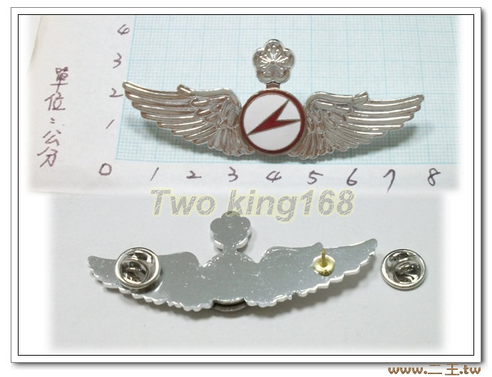 ★☆空軍滑翔資深級飛行胸章(鋁質)bf6-7★國軍 軍裝☆軍便服 軍常服