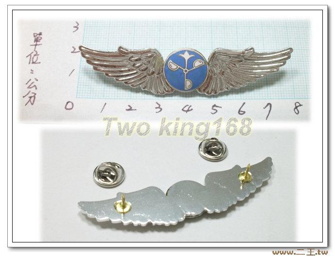 ★☆空軍氣象初級飛行胸章(鋁質)bf7-4★★國軍 軍裝☆軍便服 軍常服