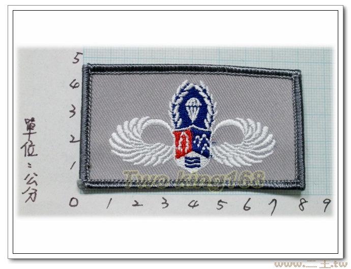 (ACU迷彩服)鐵漢傘徽臂章 2-50-3★☆空特傘兵臂章★空降特戰 涼山部隊