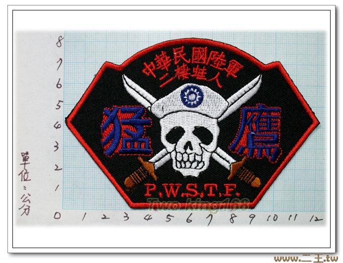 ☆陸軍政戰特遣隊臂章(猛鷹)★☆國內1-57★國軍 陸軍