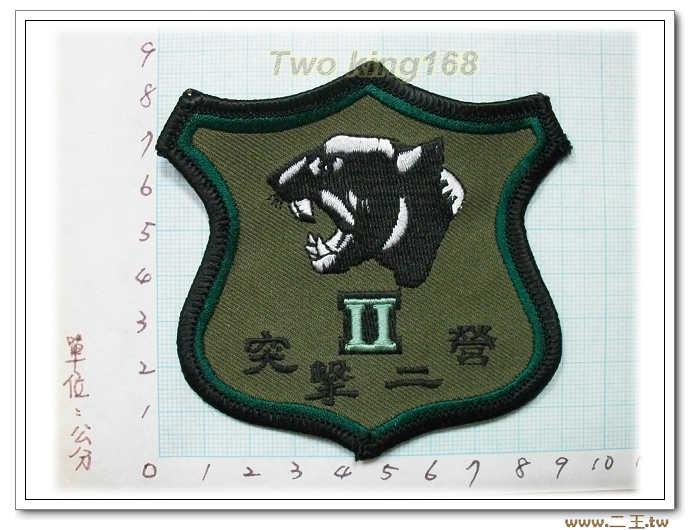 ☆4-30特戰突擊二營低視度臂章 國軍 陸軍