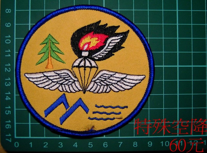 ★☆早期空特鐵漢臂章★☆國內2-24☆空降特戰★☆航空特戰★☆傘兵