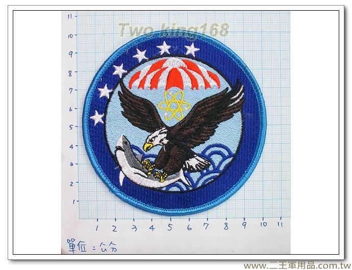 空軍10-16-1-空軍第439聯隊臂章(飛行服 飛行夾克