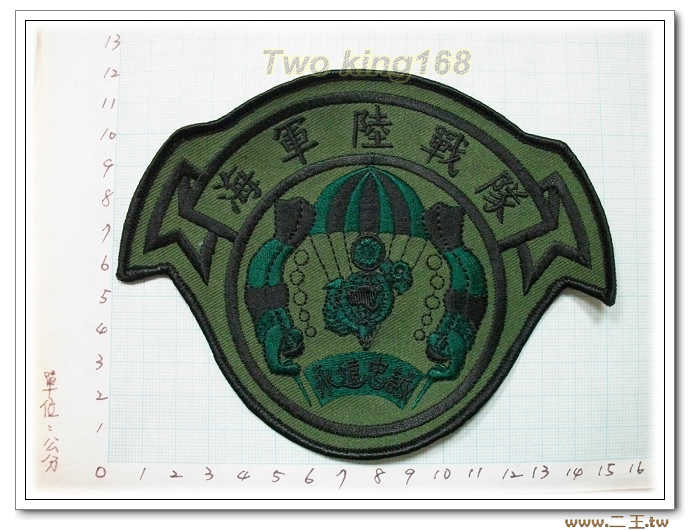 4-18-2海軍陸戰隊(低視度) 迷彩服 海陸 虎斑迷彩 臂章