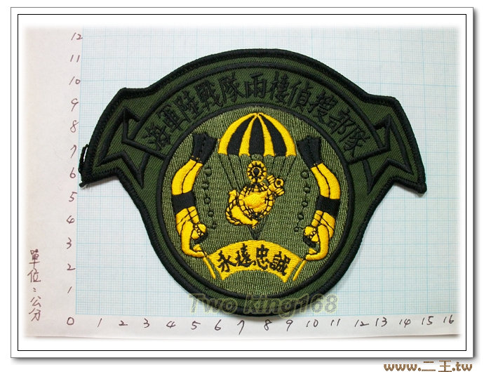 ★☆陸戰隊兩棲偵搜臂章(新式低視度)★☆國內4-12-1★ 海陸 虎斑迷彩 迷彩服 臂章