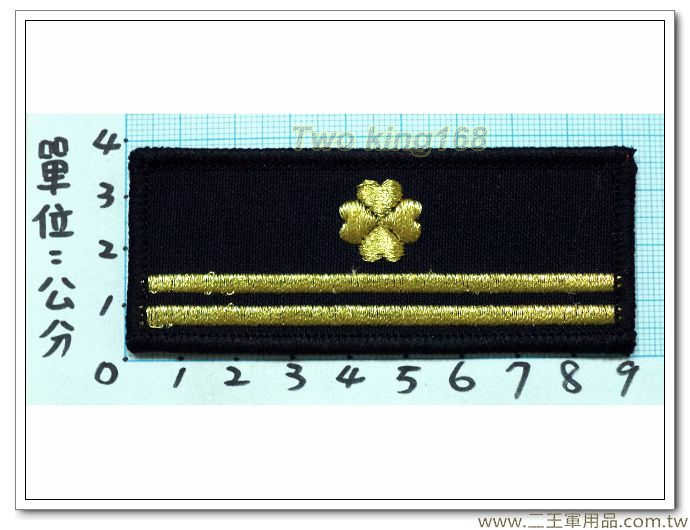 法務部矯正署監守管理員-幸運草階級胸章(二線一)-30元