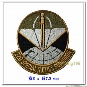 美國空軍國民警衛隊 第220特種戰術中隊臂章【國外569】