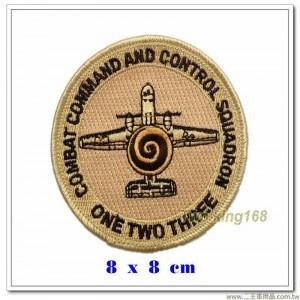 美國空軍指揮控制中隊徽章【國外571】