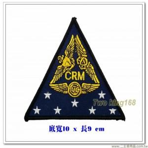 美國飛行員胸章【國外573】