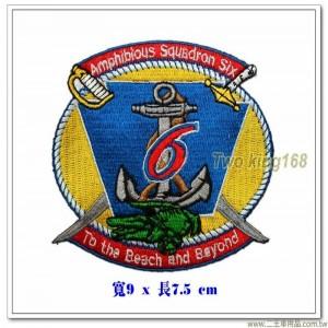 美國海軍兩棲中隊第六中隊徽章【國外577】