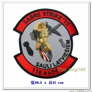 美國陸軍歐洲合作訓練活動臂章【國外589】
