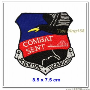 美國空軍RC-135U電子情報監偵機臂章 #戰鬥派遣【國外627】