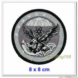 空軍439混合聯隊臂章(低視度) #空軍第439聯隊 #空軍六聯隊【空軍臂章13-3】