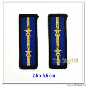 海洋委員會海巡署領章-中士(一線二星)(無魔鬼氈)