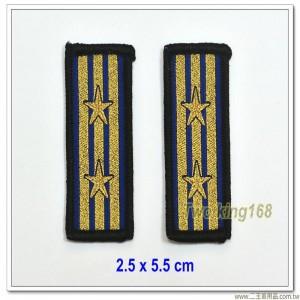 海洋委員會海巡署領章-上校(三線二星)(警監四階)(無魔鬼氈)
